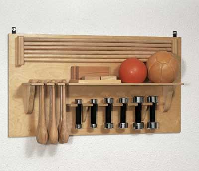 Оборудование для залов ЛФК Enraf Nonius - гантели, булавы, набивные мячи